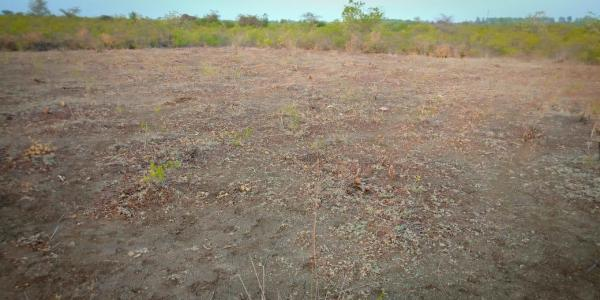 ₹ 13 Lac, Commercial Land in Siruganur - Land