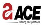 Ace Infracity Developers Pvt Ltd