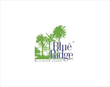 Paranjape Blue Ridge Brochure